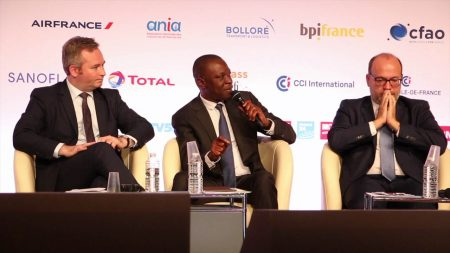 Urban Mobility: Minister Amadou KONE Shares Ivorian Experience In Paris