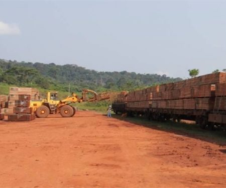 Partnership Creates A Logistics Platform In East Gabon