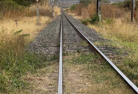 Why The Need For Vegetation Control On Railway Lines?