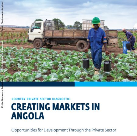 Creating Markets In Angola