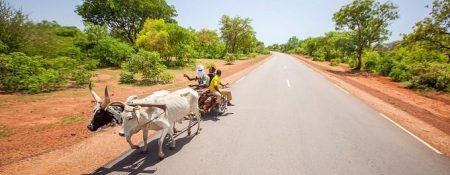 AfDB Board Authorises Investigation Into Road Transport Project In Guinea